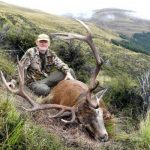 Free range Otago red stag 15 points