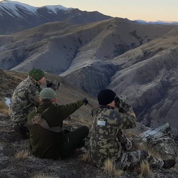 day-hunts-for-tahr-with-lake-hawea-hunting-safaris